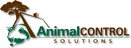 Tucson Animal Removal