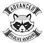 Wildlife Removal Chino Hills, CA.
