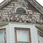 Birds roosting on roof