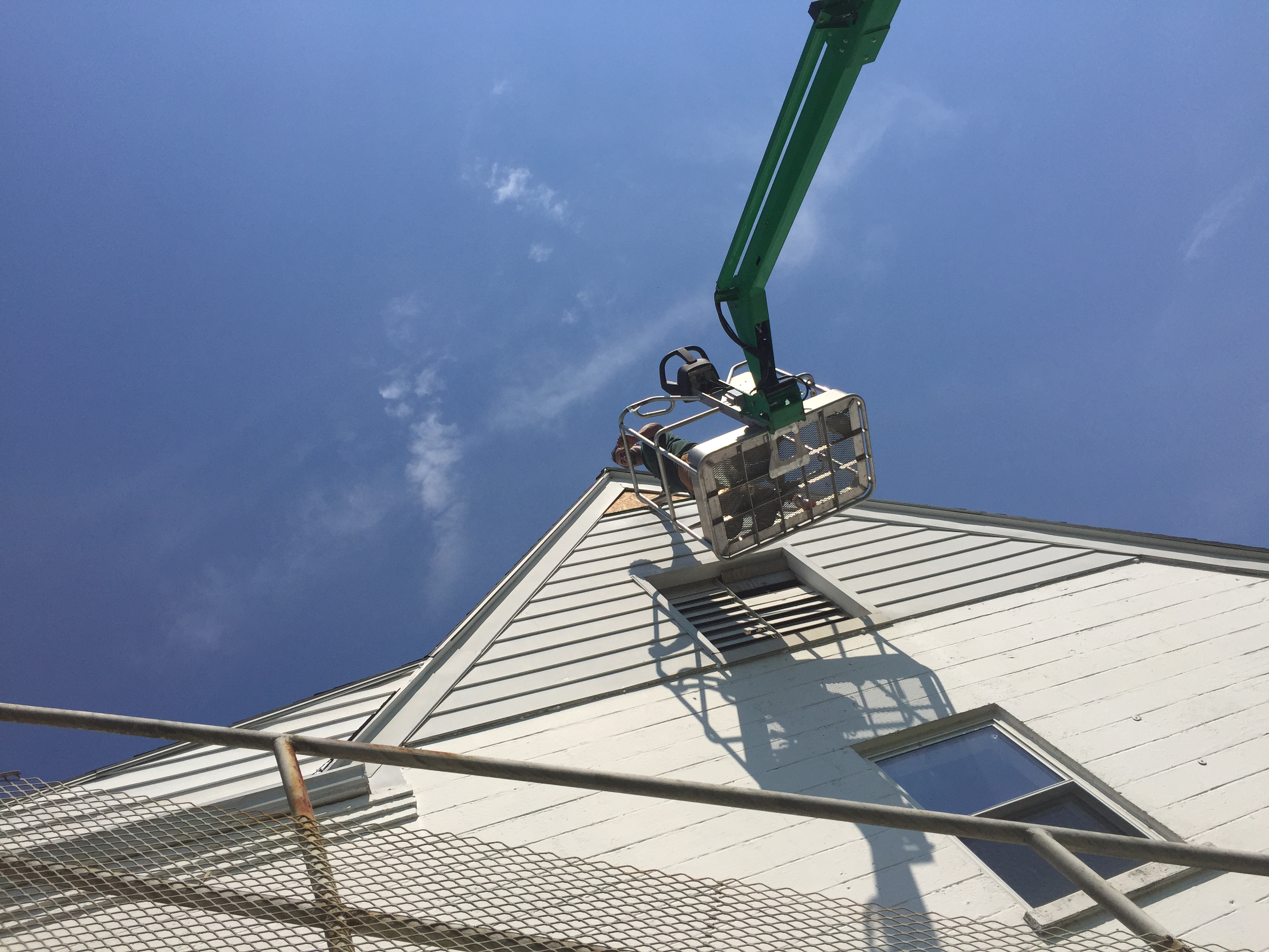 Bat removal from church