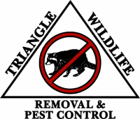 Triangle Wildlife Removal Pest Control Surf City N C 910 275 5153